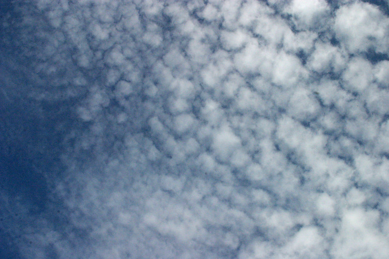 Cirrocumulus   Clouds 12/15/07