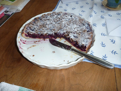 fresh-picked blueberry