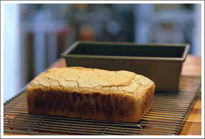 Home made brown rice bread