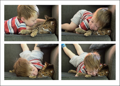 Kitty love.  Oliver is so patient with the kids.