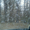Snowing - April 28th!