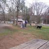 The Farm, March 20th