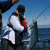 6/20  We picked a beautiful day to go deep-sea fishing for salmon!  Caught 5 really pretty fish (3 Barb, 2 me) which all had to be thrown back because they were wild Coho salmon.  Ah well, it was still a fun day on the water.