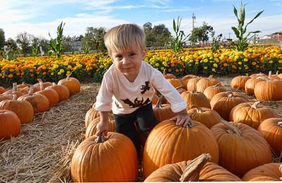 Pumpkin Farm 2014 Lopez 19