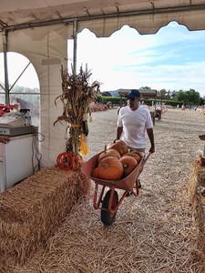 Pumpkin Farm 2014 Lopez 24