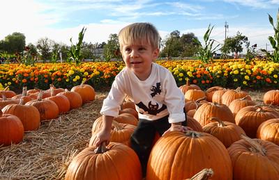 Pumpkin Farm 2014 Lopez 20