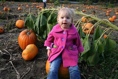 Pumpkin Patch 2008 010