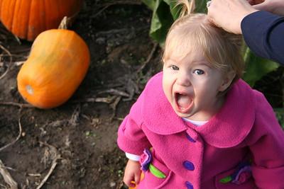 Pumpkin Patch 2008 016