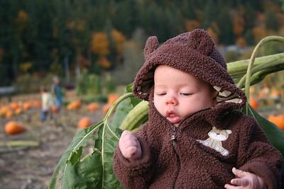 Pumpkin Patch 2008 046