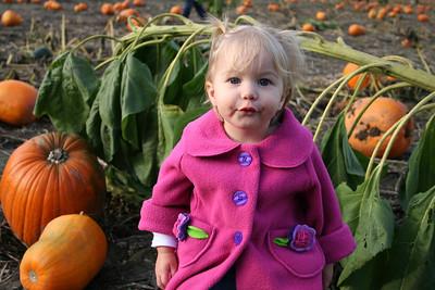 Pumpkin Patch 2008 011
