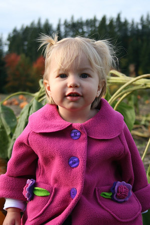 Pumpkin Patch 2008 013