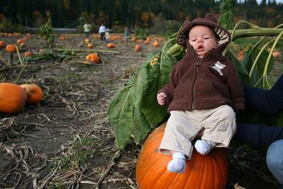 Pumpkin Patch 2008 047