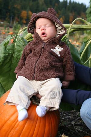 Pumpkin Patch 2008 044