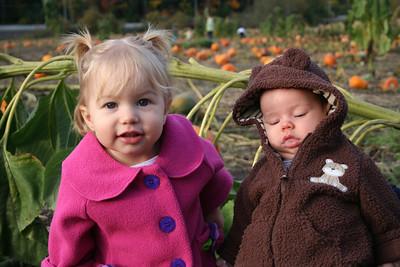 Pumpkin Patch 2008 035