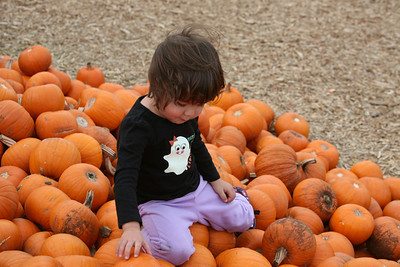 Fun at the Pumpkin Patch