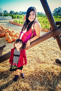 Family photos taken at the pumpkin patch in Sonoma, CA. 2012