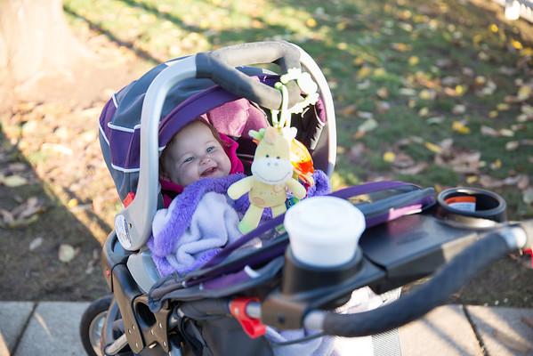 Pumpkin Patch October 2013