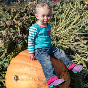 Aurelia and the great pumpkin