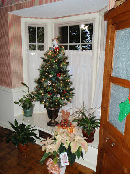 Mom's bay window tree with pink poinsettia