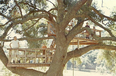 The big tree fort at the main ranch was spectacular.  The top level was about 20 feet above the ground.  In this photo are my uncle Stan, me and my sisters, and our cousins, Christy, Caryn, and Cathlene Dennis.  This was one of many large oak trees in the area.