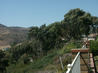 Lois' home in San Clemente, CA