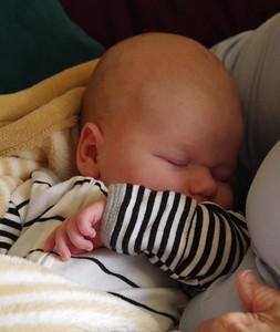 Sleepy William