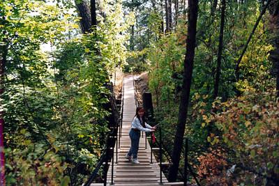 Tubbs Hill trail, Coeur D'Alene