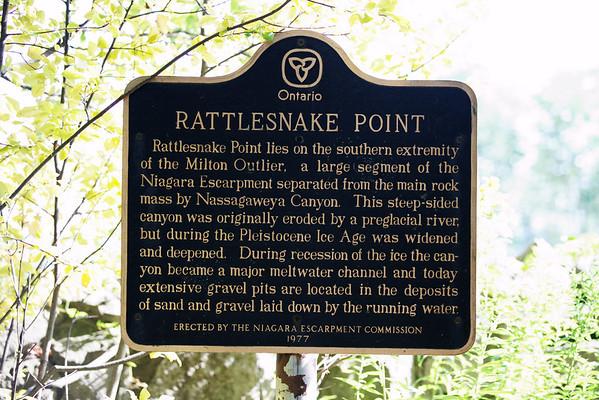 Rattlesnake Point