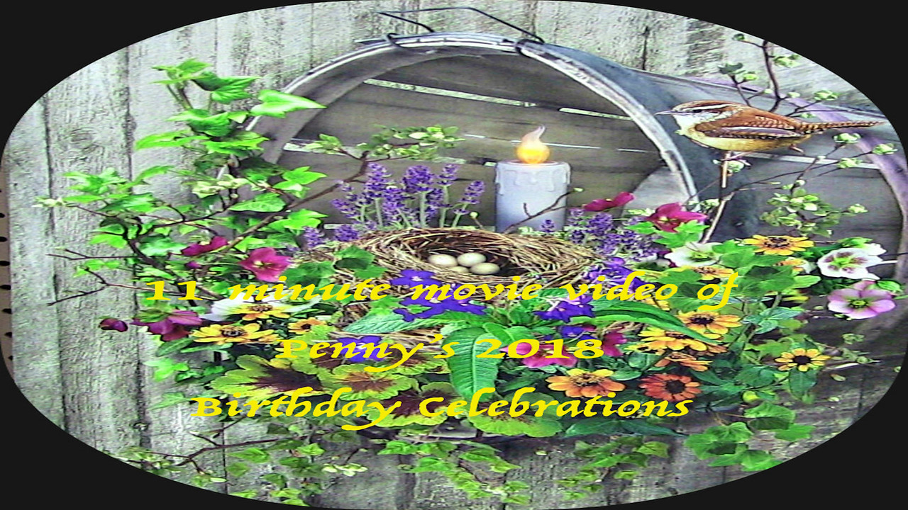 Video:  11 minutes ~~ Penny's 2018 birthday celebrations 2018