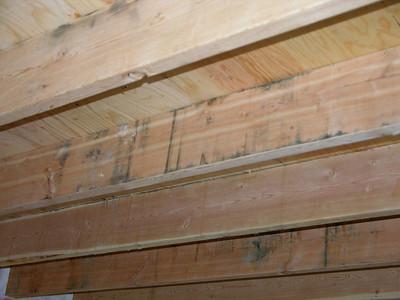 DSCN1793-11-30-04 living rm ceiling