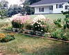 1990 August Backyard garden in Tewksbury
