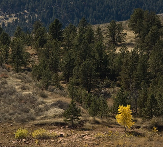 20071019-N50-FtCollins-104