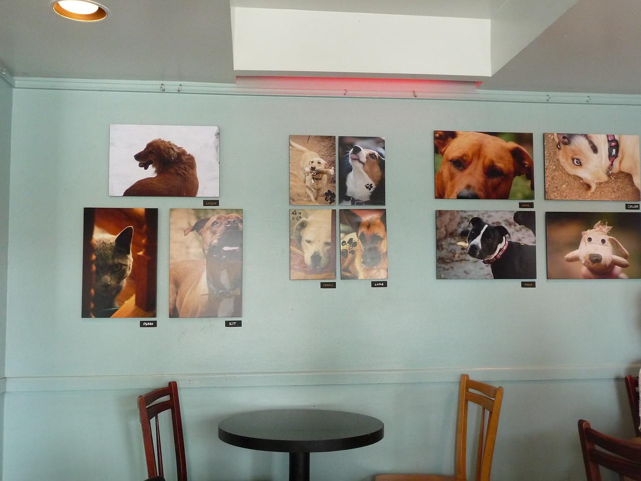 Tessa's Photography Exhibit at Gelato Vero