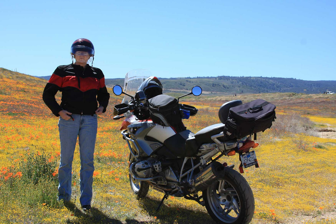 Biker Chicks love Poppie fields too