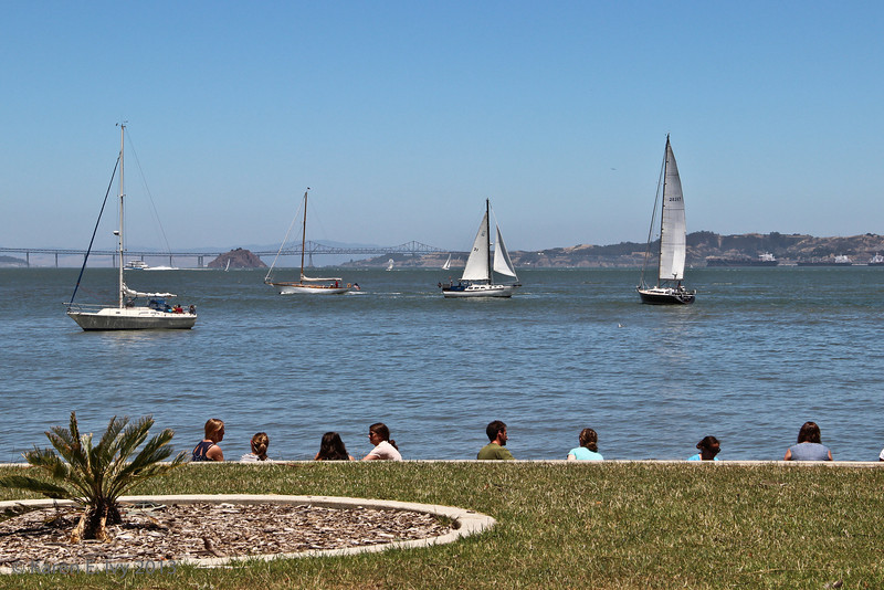 Sailboats and the Richmond Bridge, from the Immigration Center dock area