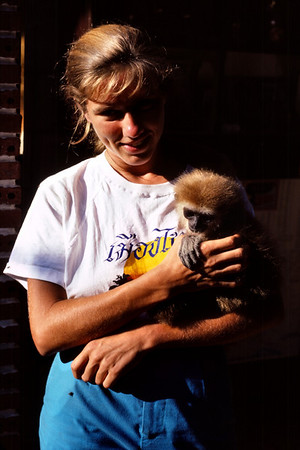 Anna Lisa with a gibbon at our guest house in Bangkok, Thailand