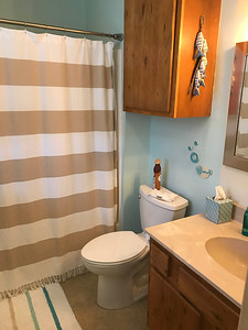Master bath has a new fixture and mirror as well.  Trim painting + touch-ups remain.