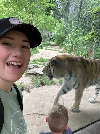 Sabrah & the Tiger