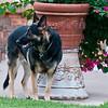 2010_Abilene_0722-40Day2