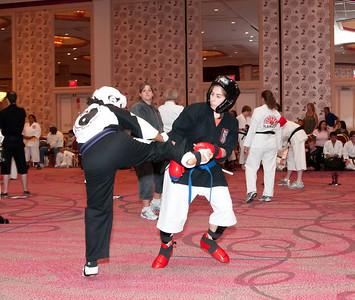 20100725_KarateWorlds-17Day2
