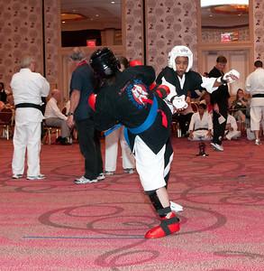20100725_KarateWorlds-23Day2