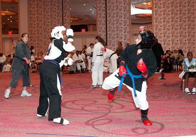 20100725_KarateWorlds-16Day2