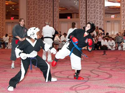 20100725_KarateWorlds-21Day2