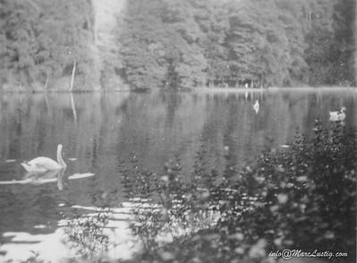 18_4_Deutschmühlenweiher1932