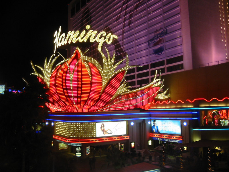 "After the Nationals were over, we went ""walkabout"" around town... Here's the Flamingo hotel where we stayed."