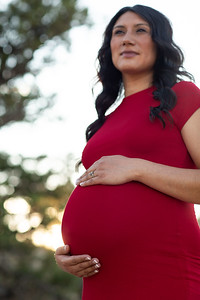 Ruby's Maternity Session