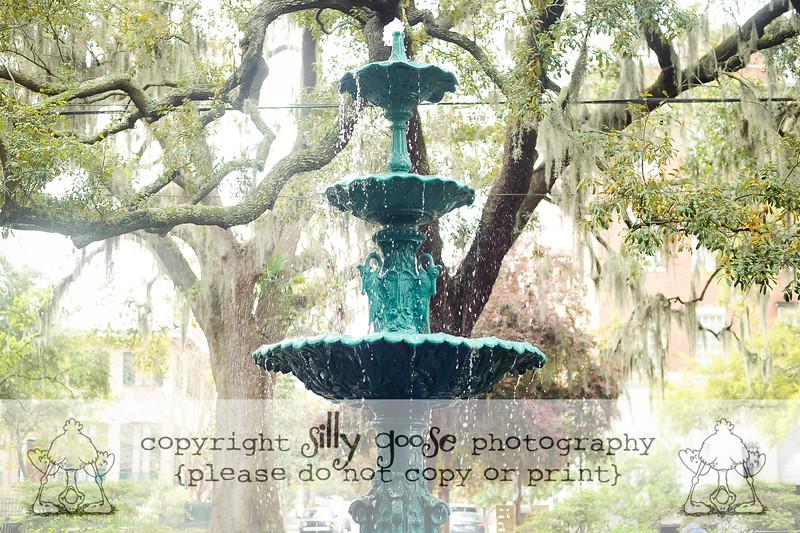 SGP Color Copy-3238