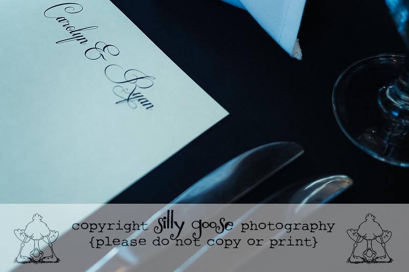 SGP Color Copy-3477
