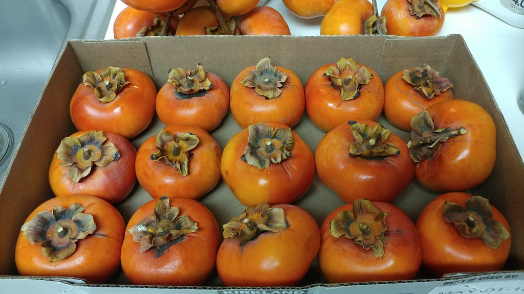 Persimmons from LapPing & Chanh My's garden in San Jose...