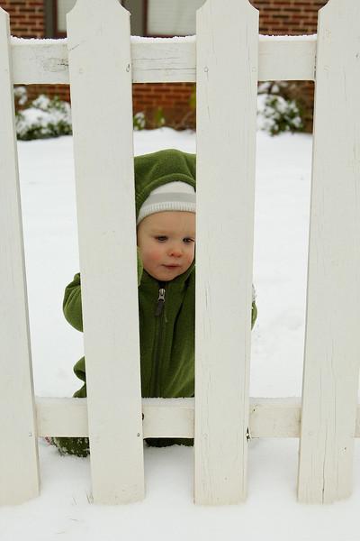 Snow2011_ 008